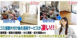 ゴミ屋敷片付け・清掃サービスの業者なら365日対応「ProBuster」