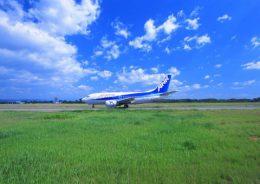 沖縄航空券ウェブ